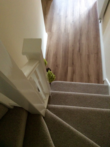 Camaro luxury vinyl planks colour: nut tree and Ulster York Wilton carpet.